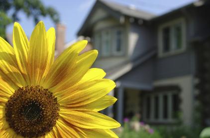 Spring Real Estate Tips